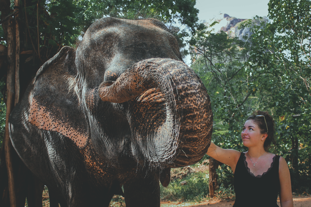 SRI LANKA ROAD TRIP | Colombo to Kandy